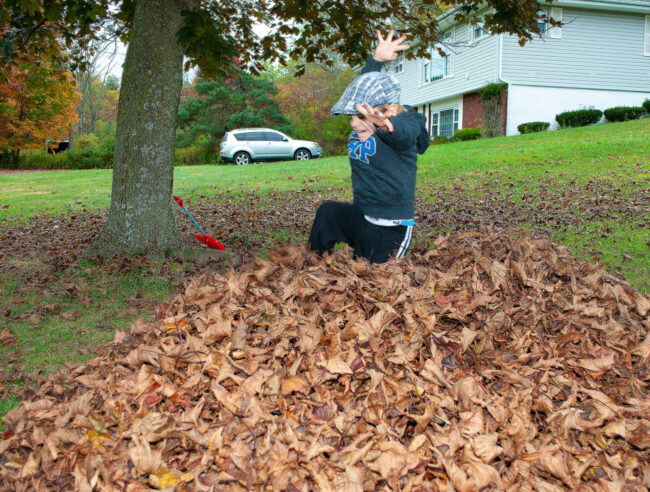 Jumping in the fall leaves